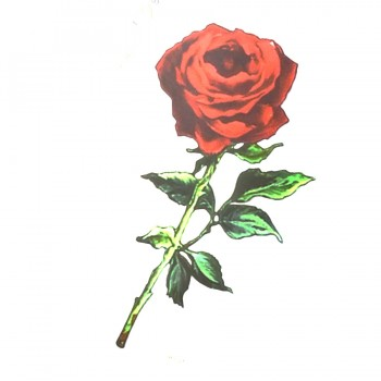Аппликация клеевая, принт,  Роза , цвет разноцветный