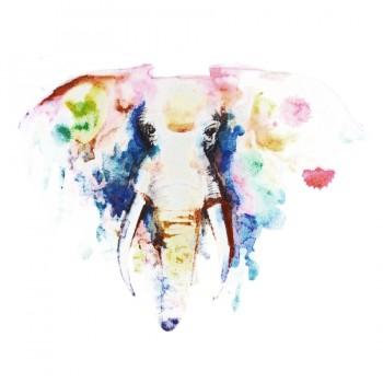 Аппликация клеевая, принт,  Слон , цвет разноцветный